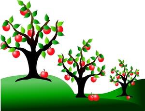 Apple orchard clipart rotten apple vector transparent stock Apple Orchard Border Clipart - Clipart Kid vector transparent stock