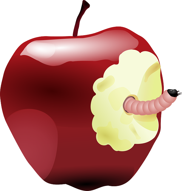 Apple peel clipart png library library dbmiller.com png library library