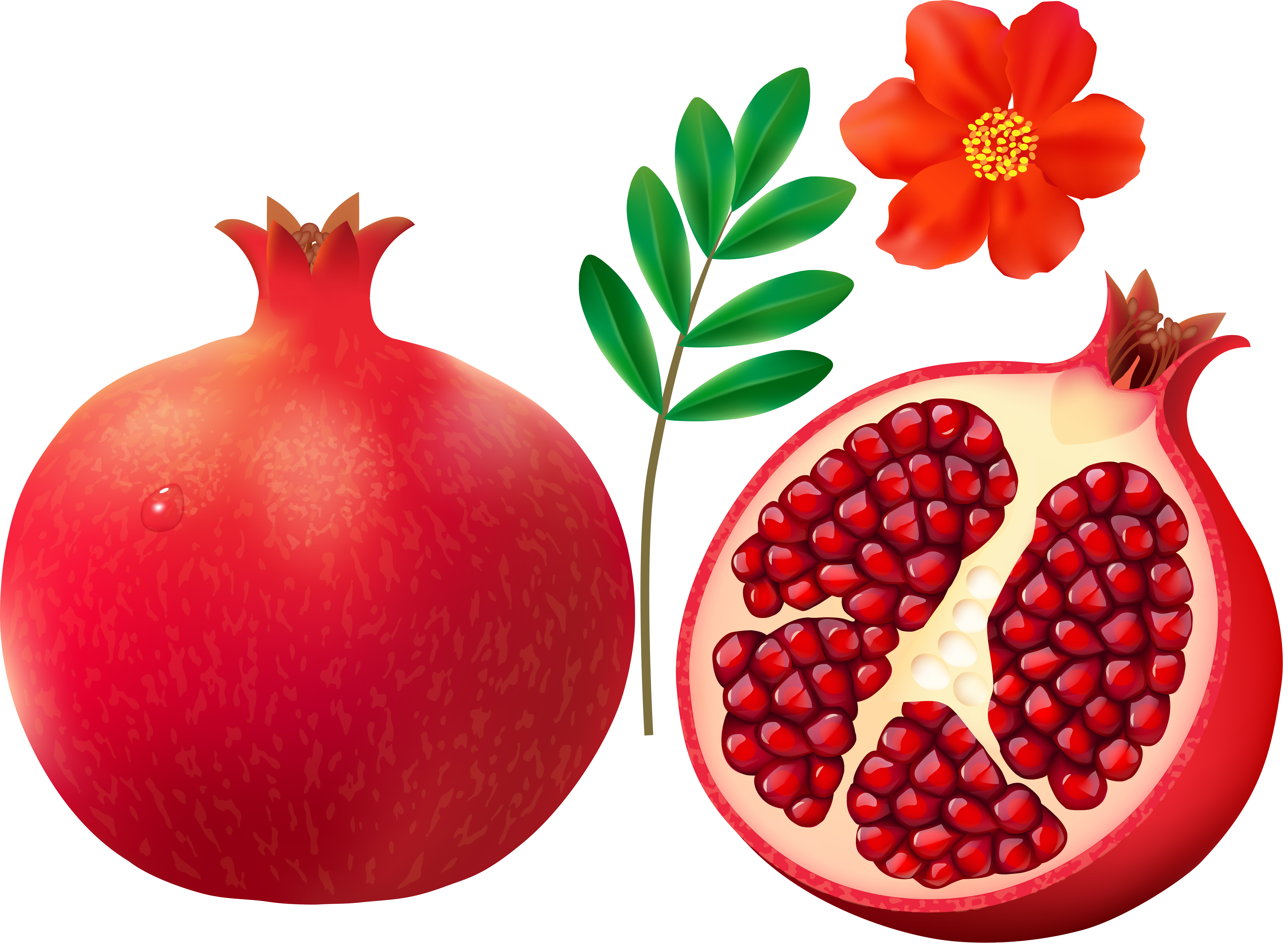 Apple picking bag clipart clip library library 0_126f56_cdba28f2_orig (6000×4403) | Owoce | Pinterest clip library library
