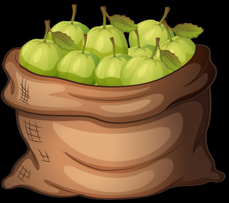 Apple picking bag clipart image free stock Apples | Плодове и зеленчуци | Pinterest | Apples, Clip art and Food ... image free stock
