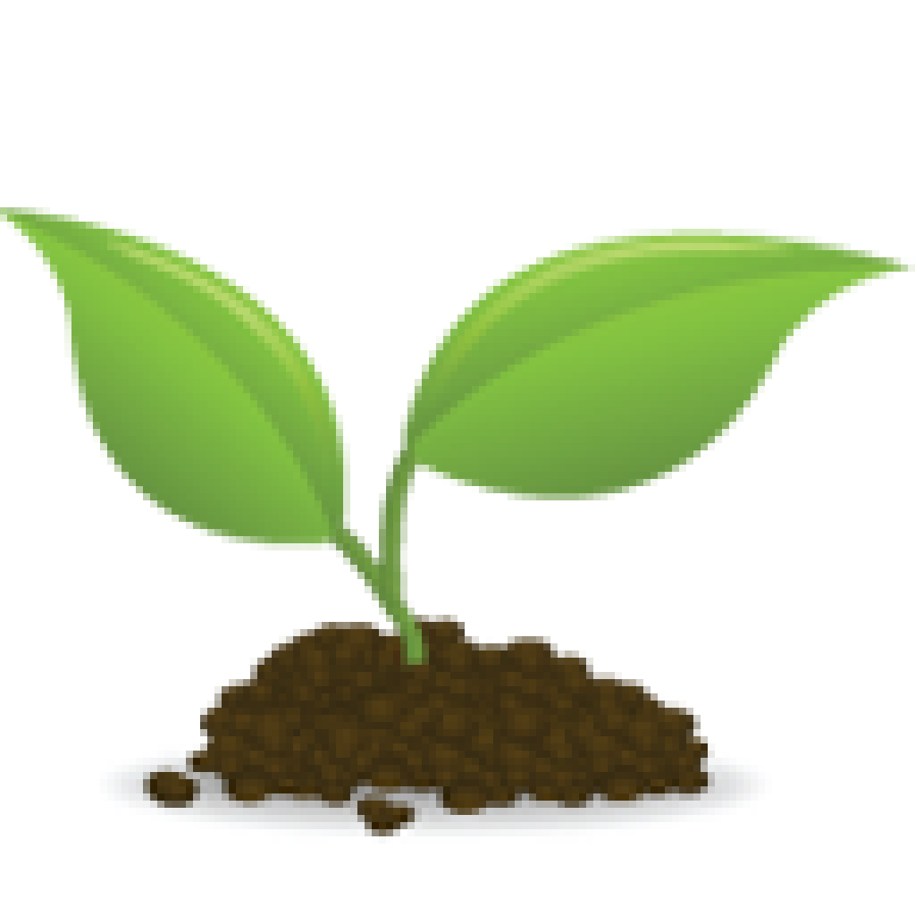 Tree seedling clipart picture transparent download Seedling Sprouting Clip art - others 1024*1024 transprent Png Free ... picture transparent download