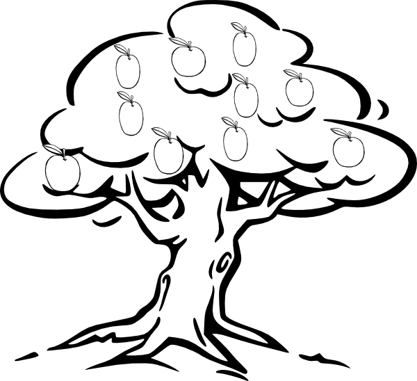 Apple tree drawing clipart free library Line Drawing Mango. Top To Draw A Basket Of Fruit With Line Drawing ... free library