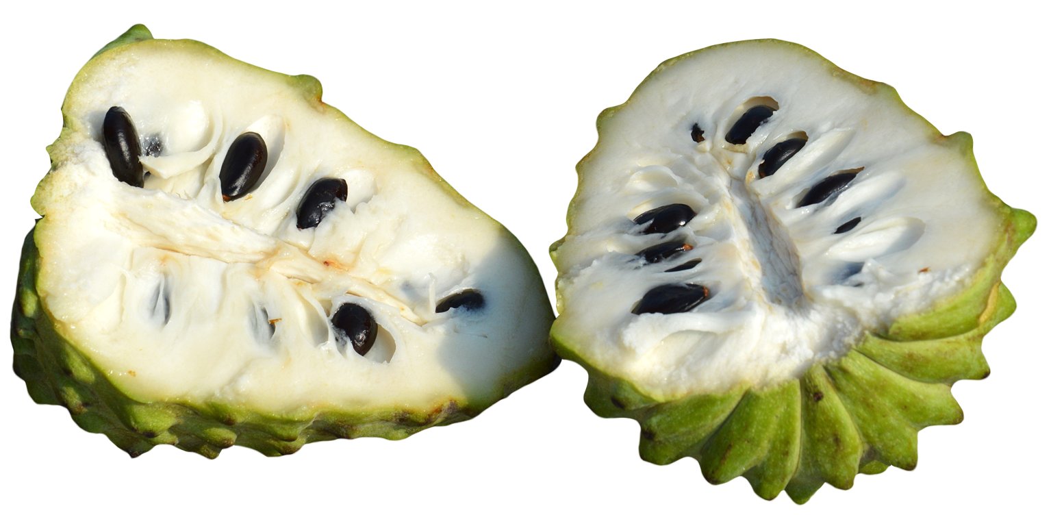 Slicing an apple clipart black and white download Custard Apples Sliced PNG Image - PurePNG   Free transparent CC0 PNG ... black and white download