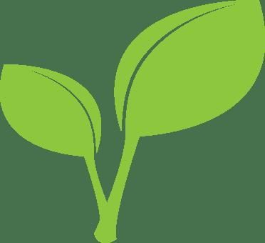Apple stem clipart free jpg free library Apple With Leaf Clipart | Jidileaf.co jpg free library