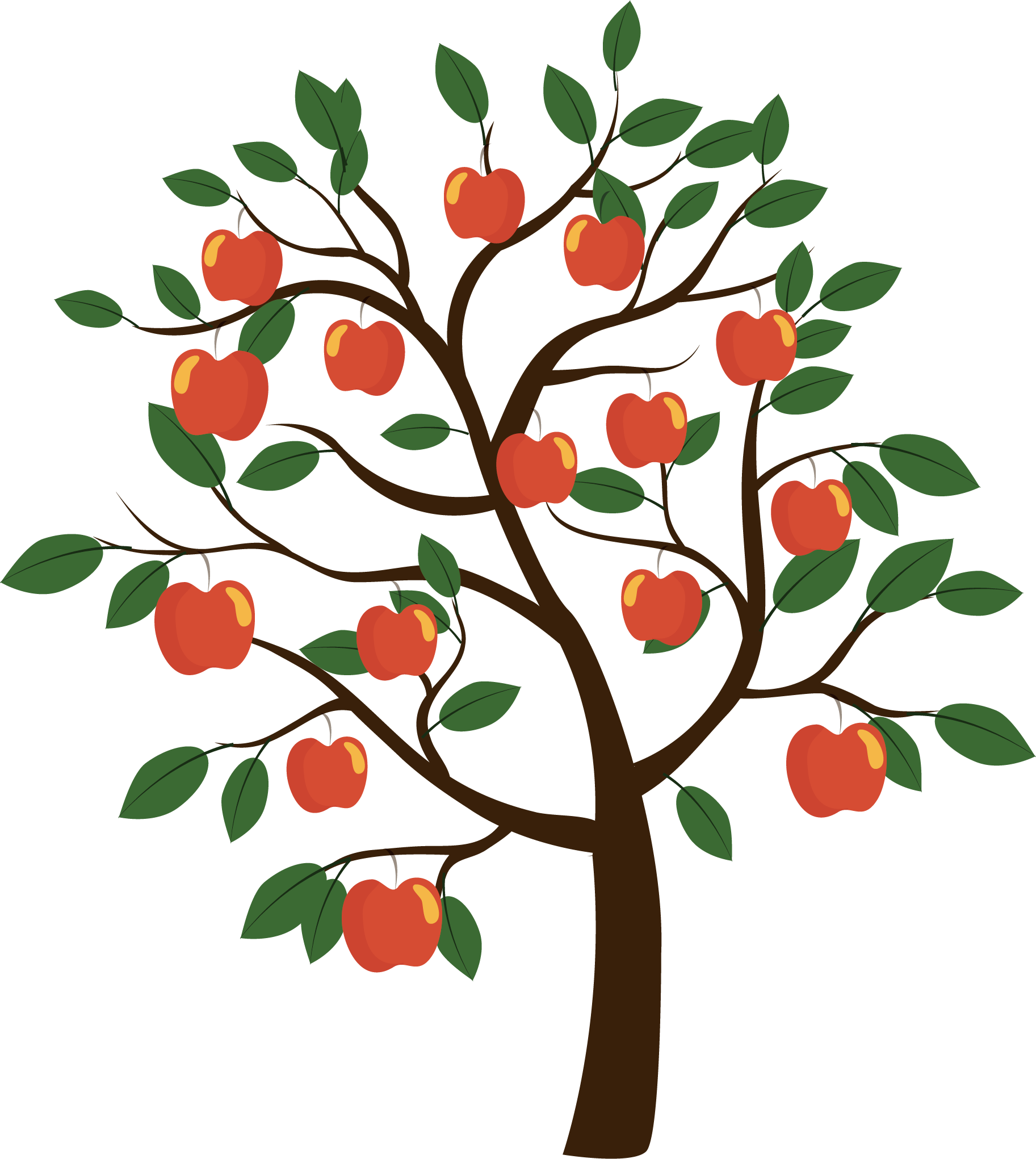 Apple tree leaves clipart vector transparent download Fruit tree Euclidean vector - Vector apple tree 1825*2041 transprent ... vector transparent download