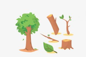 Apple tree chopped down clipart image freeuse download Cut down tree clipart 2 » Clipart Portal image freeuse download