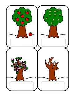 Apple tree cycle clipart banner free library Apple tree life cycle sequencing sheets (SB8917) - SparkleBox ... banner free library