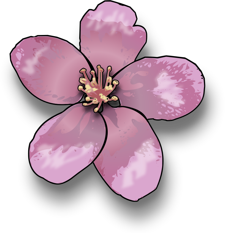 Apple tree flowers clipart graphic freeuse download Clipart - Apple blossom graphic freeuse download