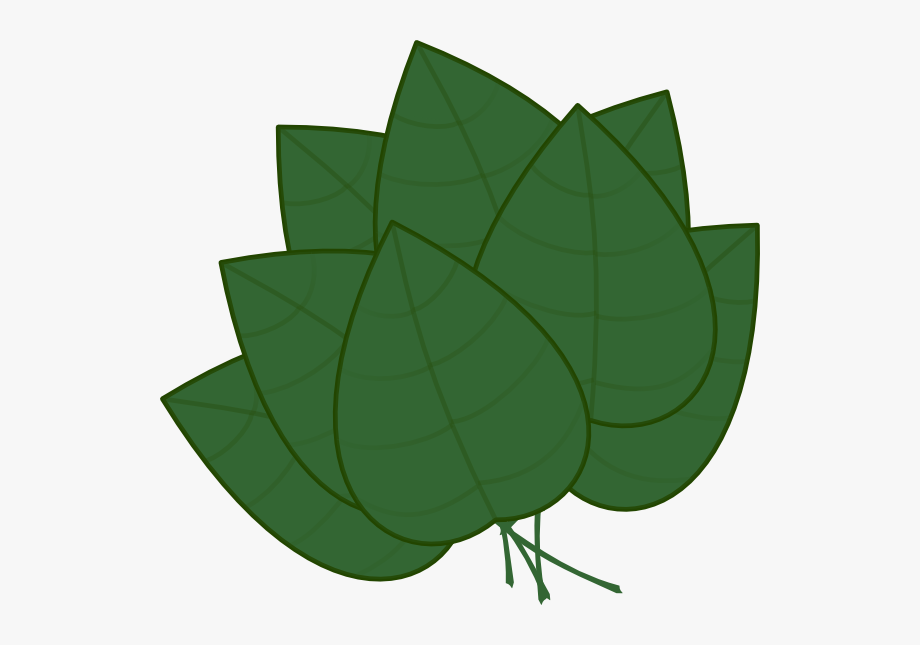 Apple tree leaf clipart graphic royalty free Basil 20clipart - Apple Tree Leaves Clipart #232420 - Free Cliparts ... graphic royalty free