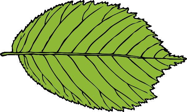 Apple tree leaf clipart clip art freeuse download Bi Serrate Leaf Clip Art at Clker.com - vector clip art online ... clip art freeuse download