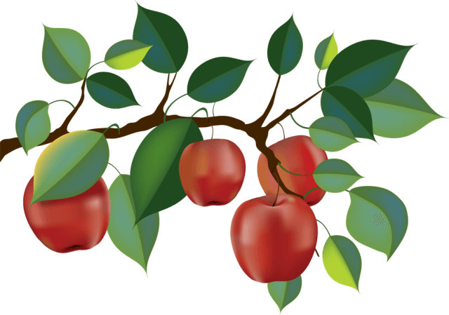 Apple tree leaf clipart graphic free download Apple Tre Cliparts - Cliparts Zone graphic free download