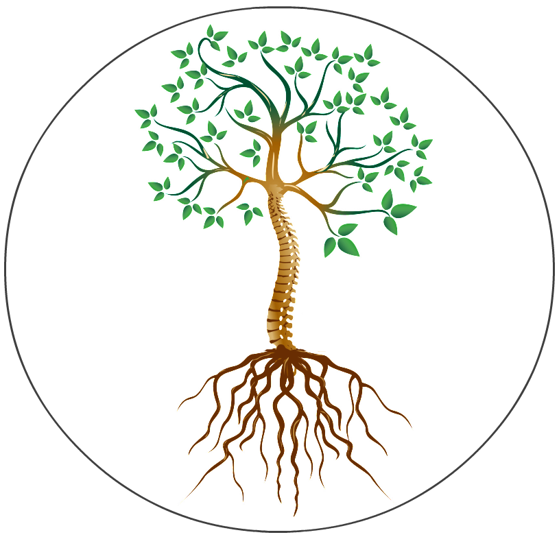 Apple tree root clipart clip art Workplace Wellness - The Root Cause Clinic - Tampa Chiropractor ... clip art
