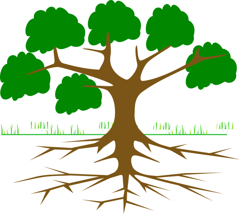 Tree root clipart clip freeuse Tree Silhouette Roots at GetDrawings.com | Free for personal use ... clip freeuse