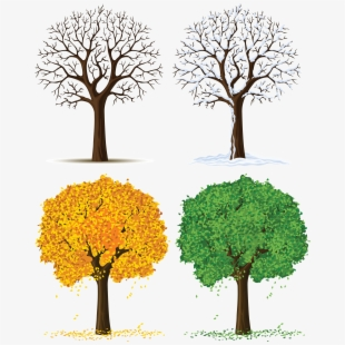 Apple tree sapling clipart stock Clip Art Transprent Png Free Download - Tree In Different Season ... stock