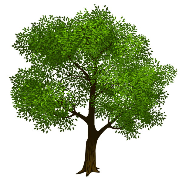 Transparent Green Tree Clipart Picture | nature clipart | Pinterest ... clip free