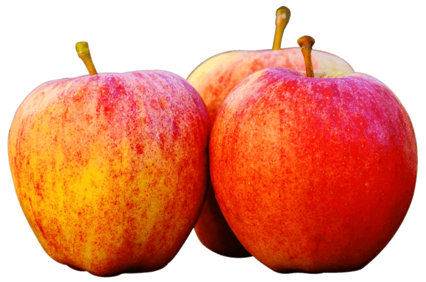 Apple tree with three apples clipart image transparent download Three Apples png - Free PNG Images | TOPpng image transparent download