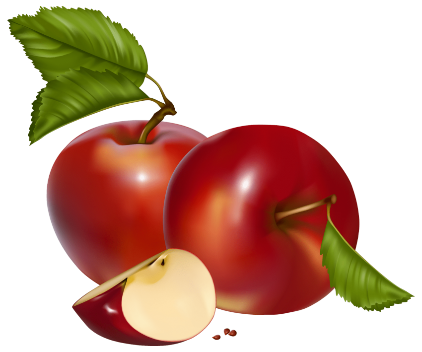 Girl holding an apple clipart image transparent library red apples png - Free PNG Images | TOPpng image transparent library