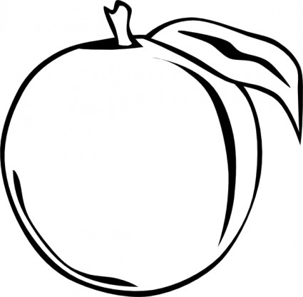 Apricot clipart black and white png freeuse library Apricot Clipart   Clipart Panda - Free Clipart Images png freeuse library