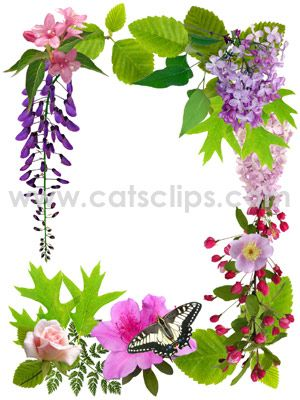 April flowers clips banner library stock April Flowers Border from Cat's Clips. A butterfly rests on a ... banner library stock