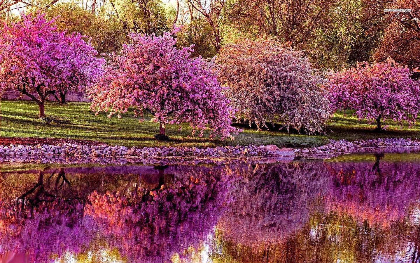 April spring backgrounds free library Spring Wallpaper - Android Apps on Google Play free library