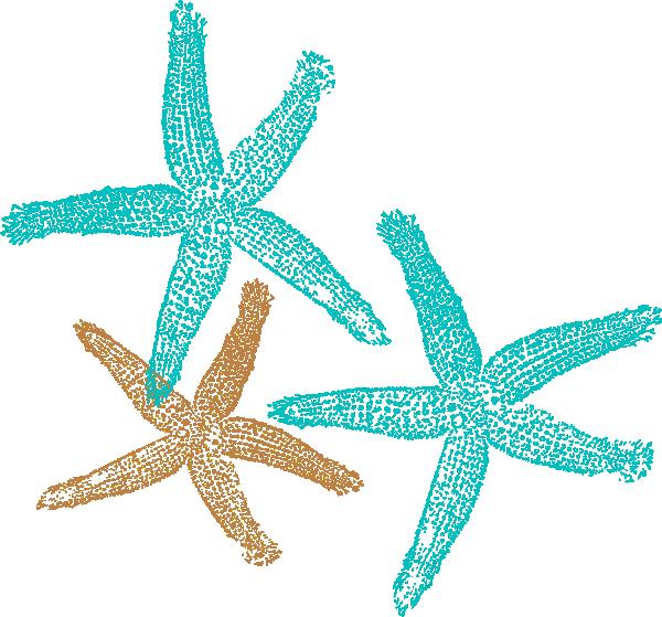 Aqua sea star clipart png free download starfish clip art coral color   Starfish Prints clip art - vector ... png free download