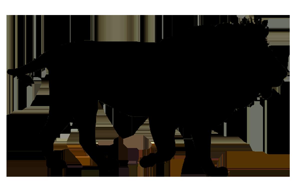 Aqua silhouette cat clipart graphic black and white download liion silhouette | Zoo animals unit | Pinterest | Silhouettes graphic black and white download