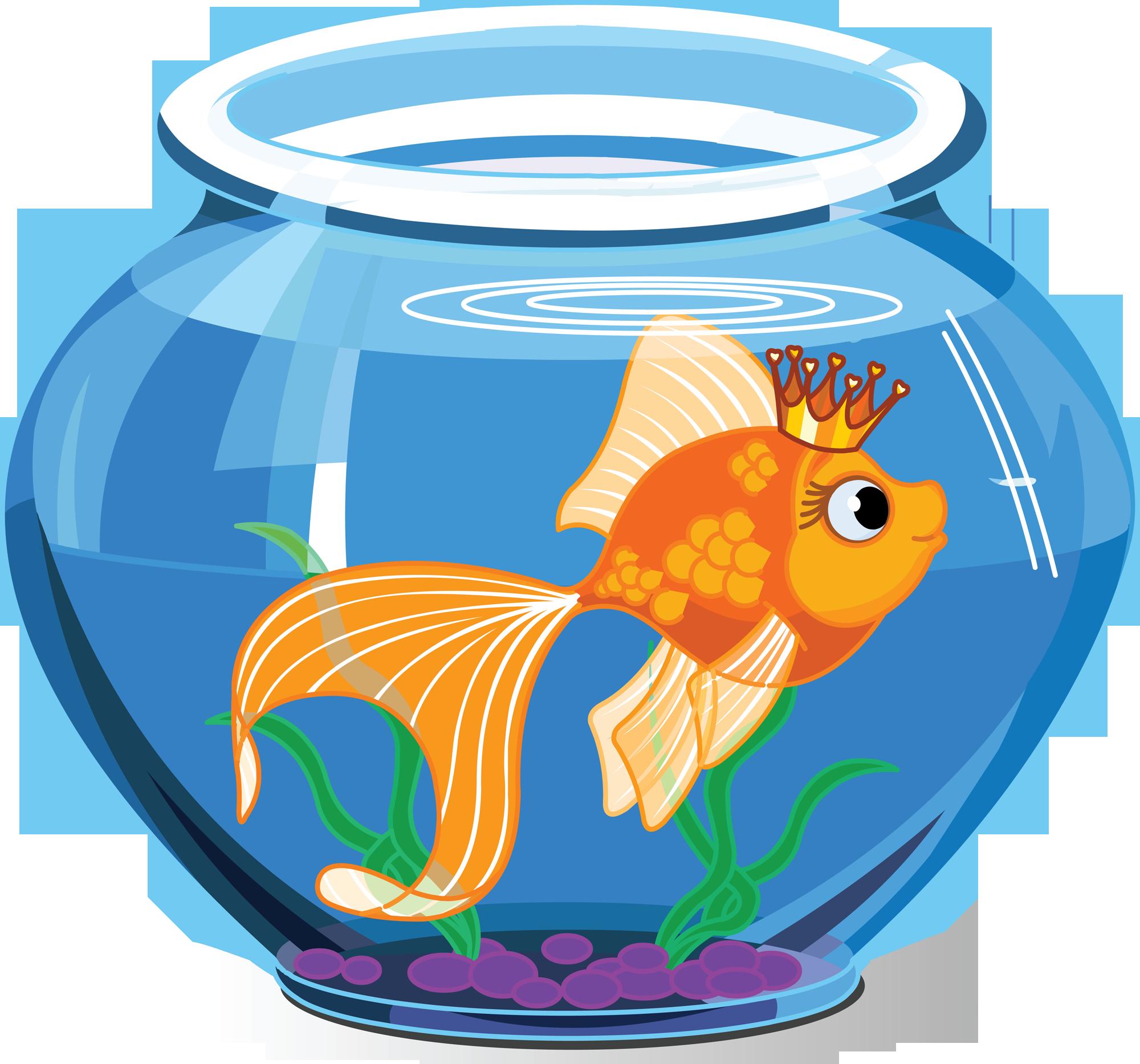 Aquarium fish images clipart graphic transparent stock Fish Tank Clipart | Free download best Fish Tank Clipart on ... graphic transparent stock