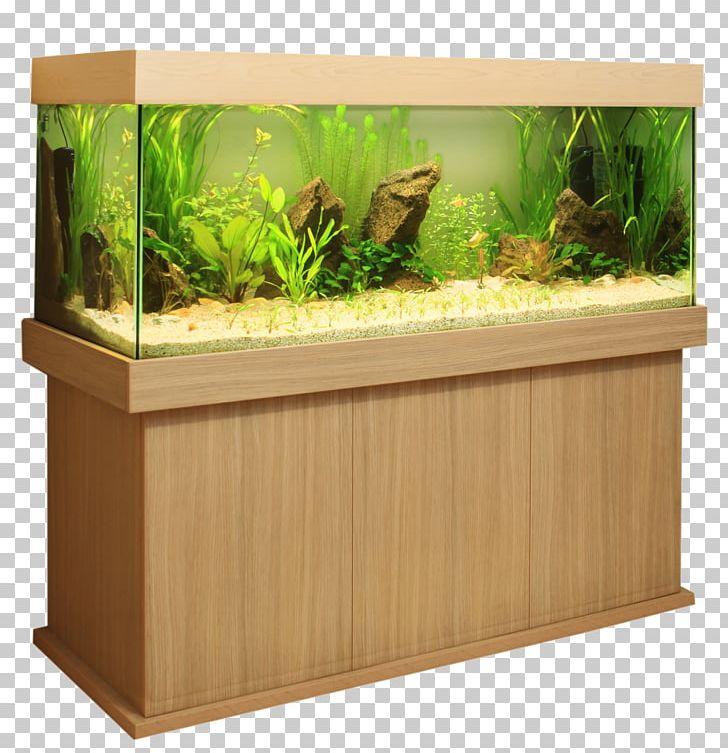 Aquascaping clipart clip art download Reef Aquarium Fish Aquascaping House PNG, Clipart, Animals, Aquarium ... clip art download