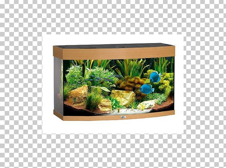 Aquascaping clipart svg royalty free Light Aquarium Filters Aquascaping Aquariums PNG, Clipart, Aquarium ... svg royalty free