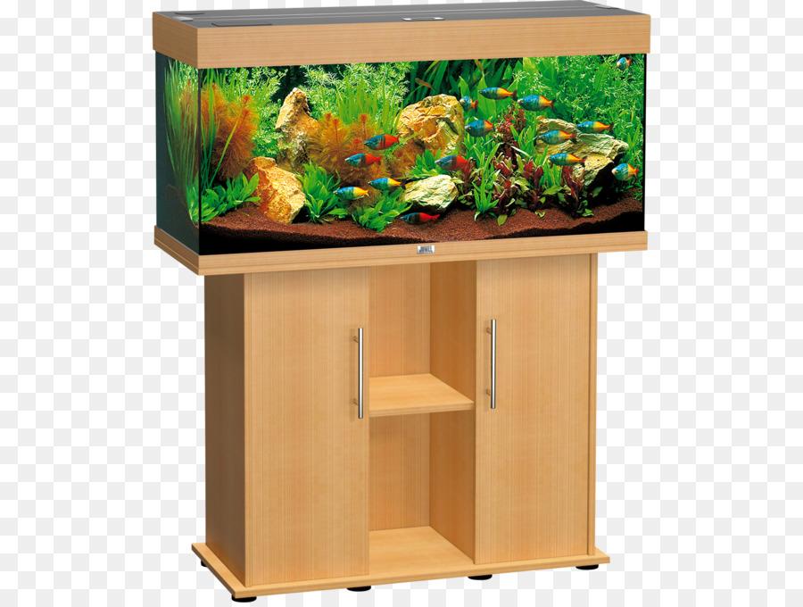 Aquascaping clipart jpg transparent Fish Cartoon png download - 1600*1200 - Free Transparent Aquarium ... jpg transparent