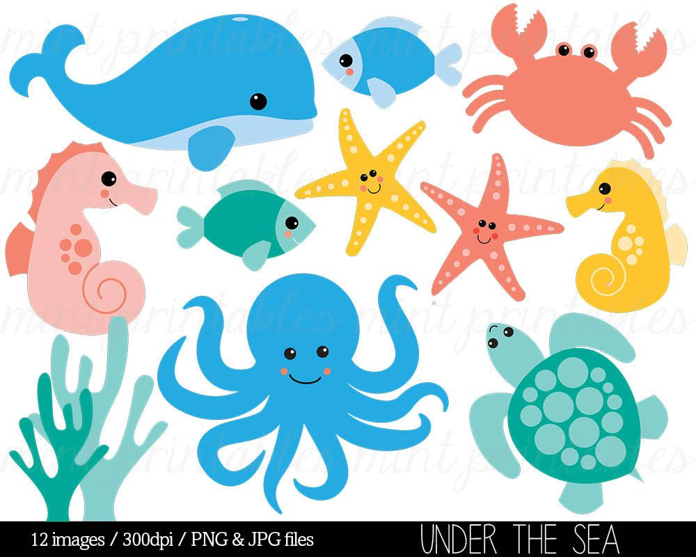 Aquatic animals clipart png freeuse library Aquatic animals clipart » Clipart Station png freeuse library