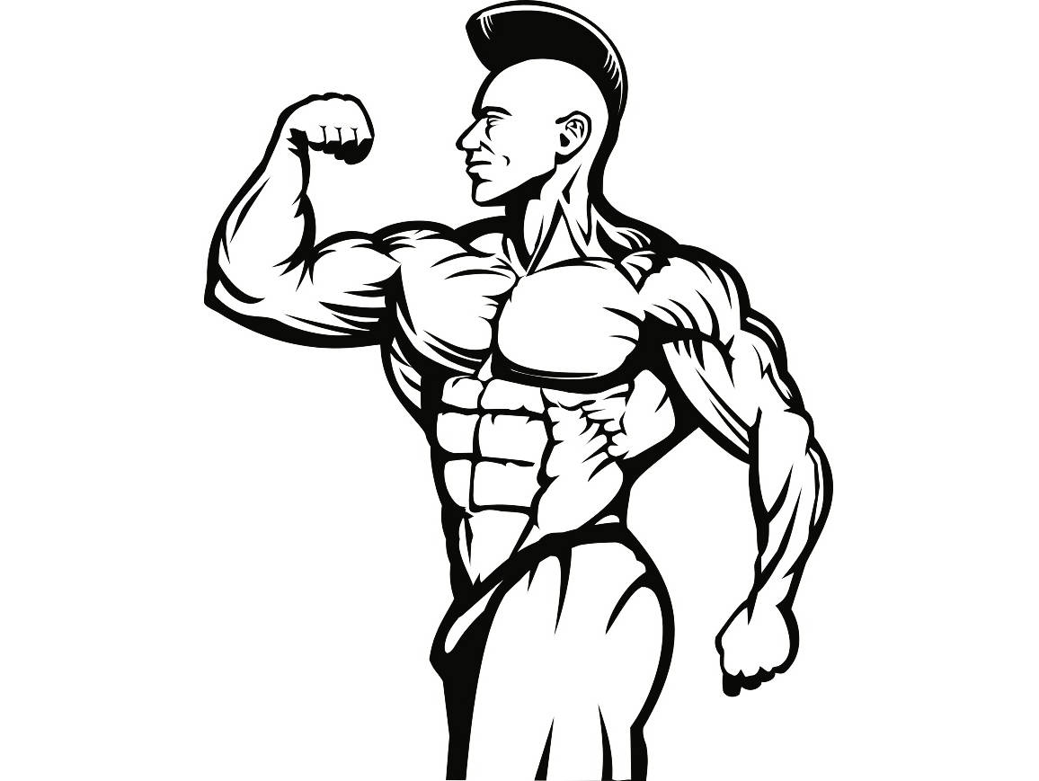 Archer pose body building clipart banner transparent Female Bodybuilder Drawing | Free download best Female Bodybuilder ... banner transparent