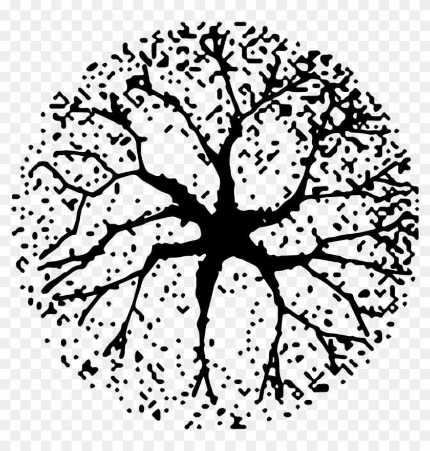 Architecture tree plan clipart svg transparent Free Tree Plan Png - Architecture Tree Plan Png, Transparent Png ... svg transparent