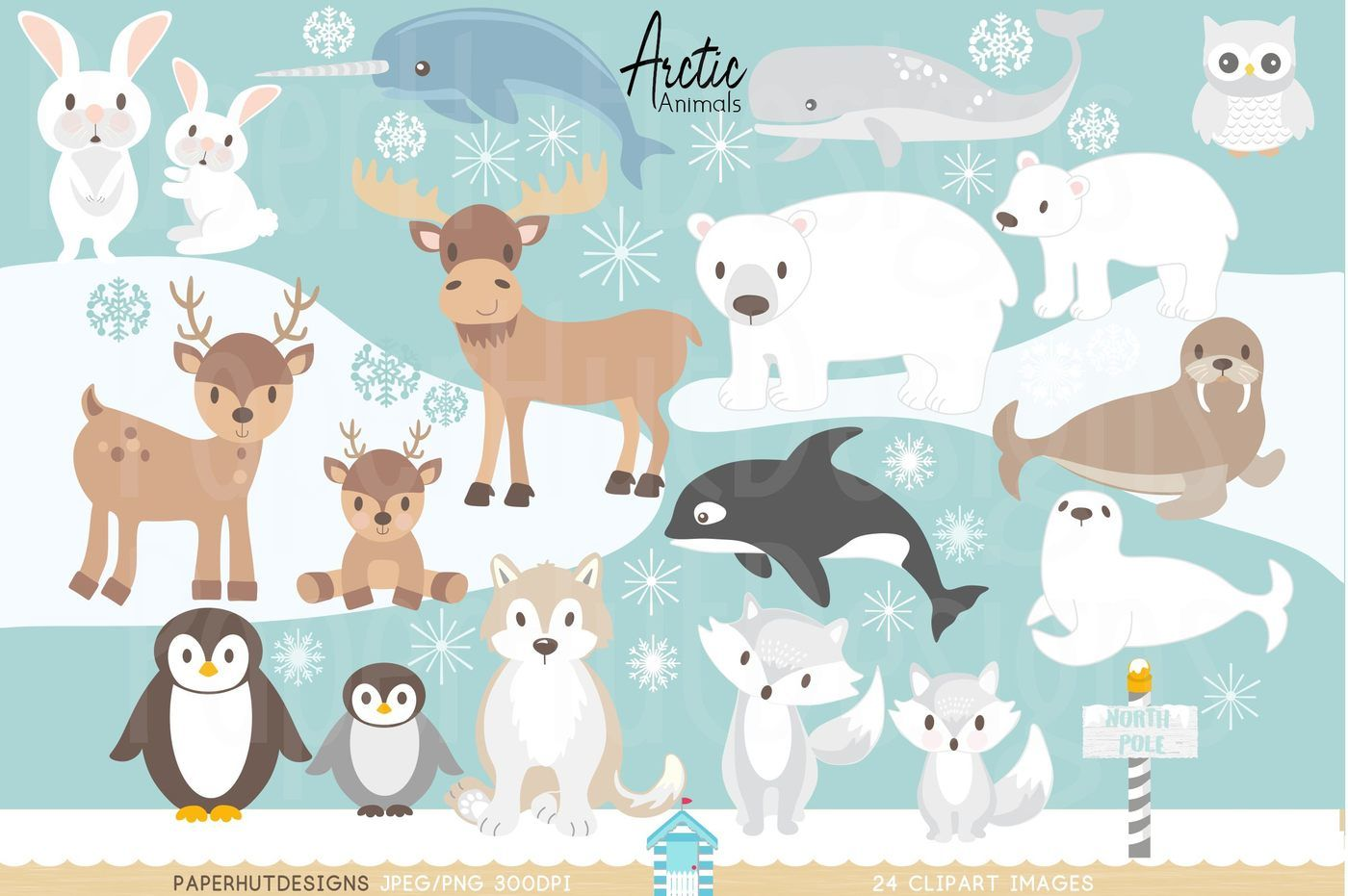 Arctic algeria clipart graphic download Arctic Animals Clipart By PaperHutDesigns | TheHungryJPEG.com graphic download