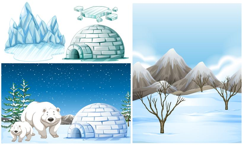 Arctic scene clipart clip art library library Polar bears and igloo on snow field Vector - Download Free Vector ... clip art library library