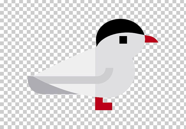 Arctic tern clipart picture black and white Arctic Tern Computer Icons Terns PNG, Clipart, Anatidae, Animal ... picture black and white