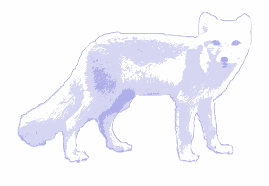 Arctic wolves clipart clip free library Arctic Fox Red Fox Arctic Wolf - Arctic Wolf Arctic Fox Clip Art ... clip free library