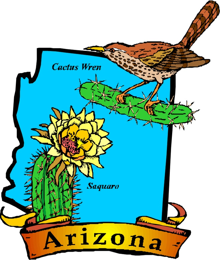 Arizona state with cactus clipart jpg Arizona Clipart | Free download best Arizona Clipart on ClipArtMag.com jpg