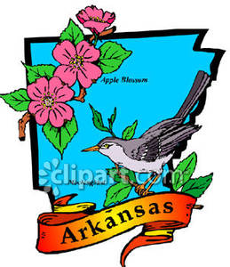 Arkansas state bird clipart picture black and white library Map of Arkansas With State Bird and Flower - Royalty Free Clipart ... picture black and white library