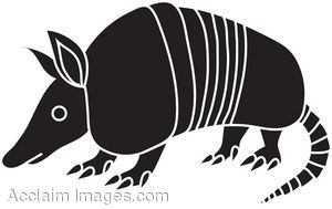 Armadillo clipart black and white
