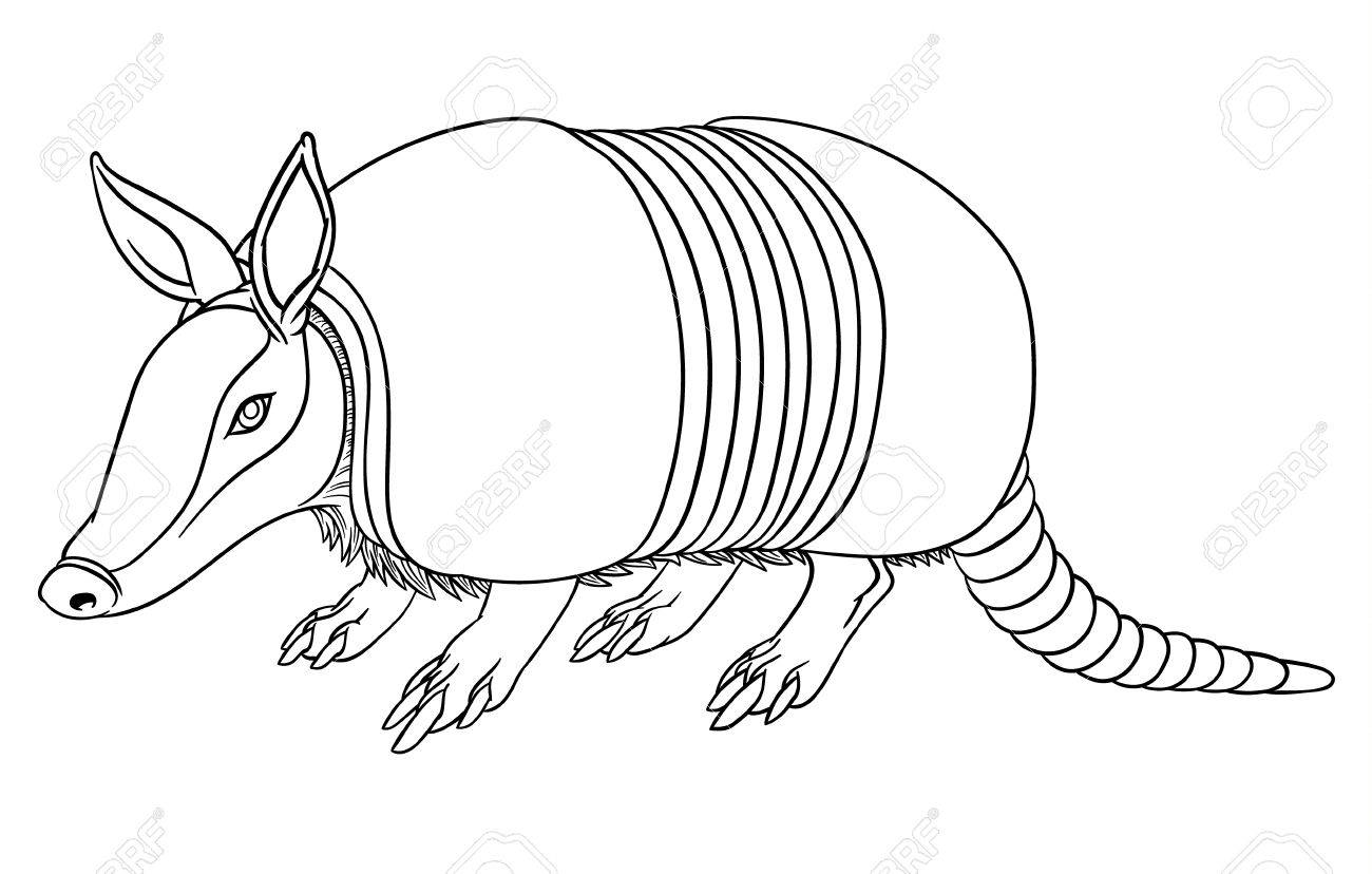 Armadillo clipart black and white clip royalty free Armadillo Clipart Black And White (92+ images in Collection) Page 1 clip royalty free