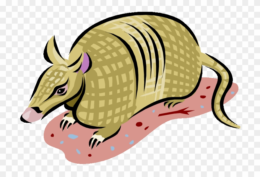 Armadillo clipart png clip freeuse library Armadillo Clipart - 9 Banded Armadillo Clipart - Png Download ... clip freeuse library