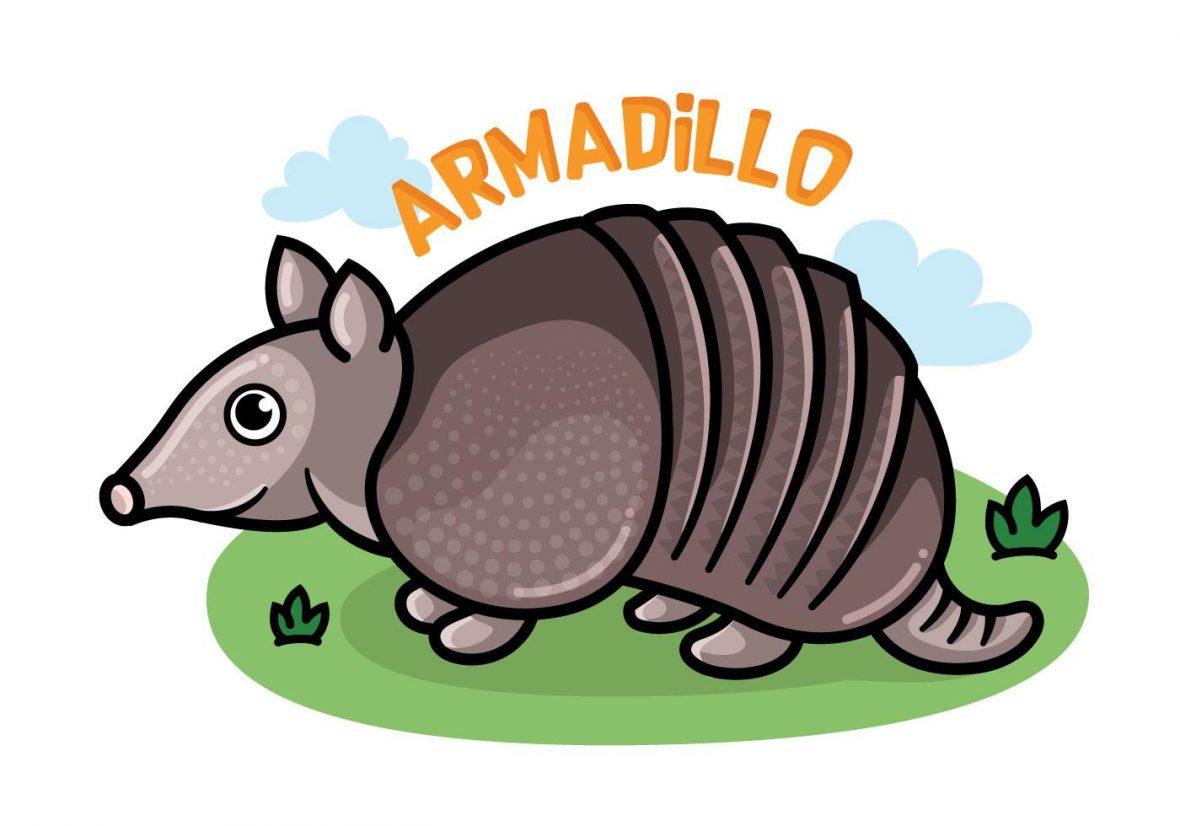 Armadillo vector clipart clip art black and white library Armadillo Cartoon Vector - Free Vectors and Clip Art, Free Icons clip art black and white library