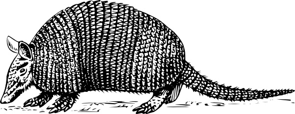 Armadillo vector clipart graphic freeuse Armadillo clip art Free vector in Open office drawing svg ( .svg ... graphic freeuse