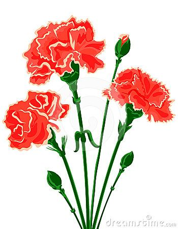Arnations clipart image royalty free Red Carnation Clipart Carnation Flower Clip | AXO Reunion in 2019 ... image royalty free