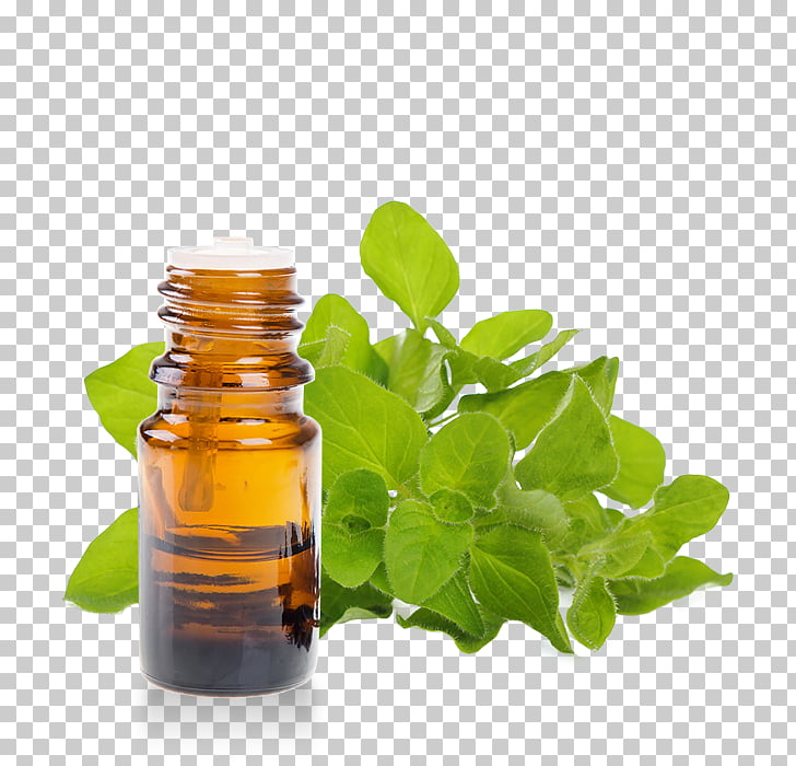 Aromaterapia clipart picture transparent library Hierbas aceite esencial aromaterapia orégano, aceite PNG Clipart ... picture transparent library