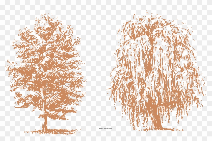 Clipart arquitectura black and white stock Draw Trees Clipart Png - Dibujos Arboles Arquitectura, Transparent ... black and white stock