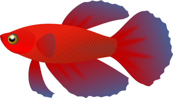 Artistic clipart no background svg freeuse stock Small fish clipart no background - ClipartFest svg freeuse stock