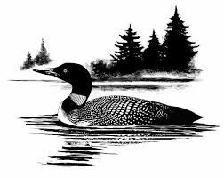 Arty loon magic show clipart jpg library Image result for loon clipart black and white | Burn wood baby ... jpg library