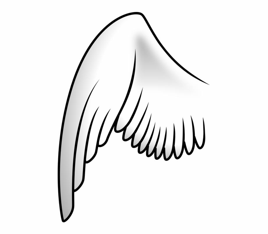 Asa de anjo clipart